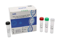 Real-Time Fluorescent RT-PCR Kit for 2019-nCoV Detection